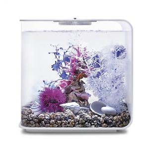 Oase Biorb Pink Ocean Decor Set 30l - Ornements de décoration d'aquarium et de réservoir de poissons 822728484449