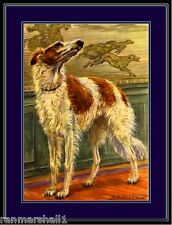 Vintage Print Russian Wolfhound Borzoi Dog Art Picture
