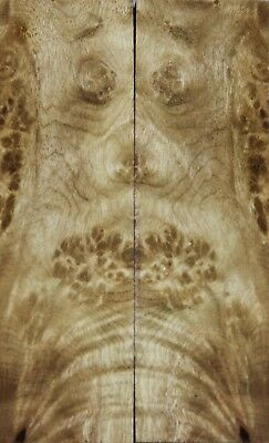 "Golden Camphor Wood Burl Bookmatch Scales//Pistol Grips 5.1/""x3.1/""x0.45/"" 4499"