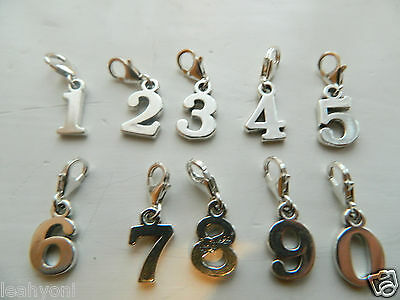 Clip On Number Charm 1 2 3 4 5 6 7 8 9 Sterling Silver Birthday European Large