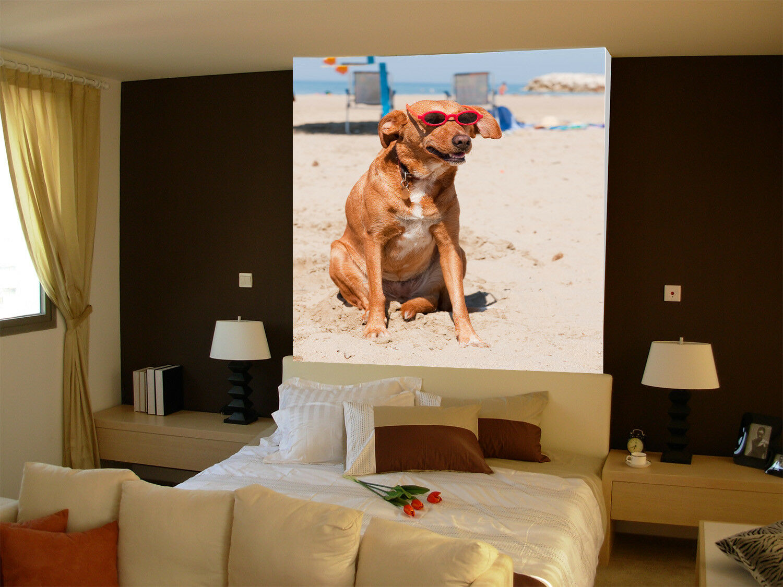 Papel Pintado Mural De Vellón Perro De Gafas De Playa 23 Paisaje Fondo Pantalla