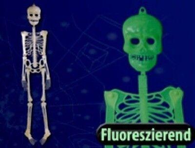 20 Stück Halloween-Deko Kunststoff-Skelett 30 cm Helloween leuchtet im Dunkeln