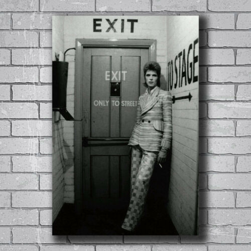David Bowie English Singer To Stage Vintage Custom Poster Print Art Decor T-610