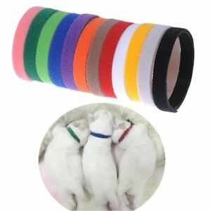 12-Color-Newborn-Puppy-ID-Collar-Pet-Dog-Cat-Nylon-Collars-Adjustable-new