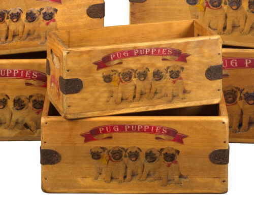 Pug Puppies Box Great Pug Pups Gift Vintage Storage Crate Single