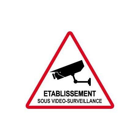 Autocollant Etablissement sous vidéo surveillance alarme 3 Taille:15x15 cm