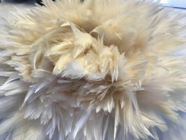 BULK 50 Cream Beige Rooster Feathers 7-11cm DIY Craft Millinery Dream Catcher