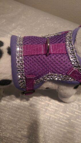 Soft vajilla pecho vajilla perros vajilla lila brillo collar XS-m cachorros