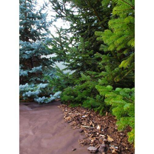1,6 x 10m Gartenvlies Mulchfolie Unkrautvlies Mulchvlies NEU 16m²  50gr//m²