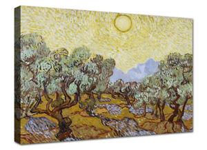 Van Gogh Ulivi 2 Quadro Stampa su Tela Canvas Quadri Moderni XXL Arte Casa