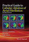 Practical Guide to Catheter Ablation of Atrial Fibrillation by Pierre Jais, Jonathan S. Steinberg, Hugh Calkins (Hardback, 2016)