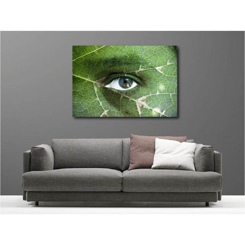 Canvas Fabric Deco Rectangle Eye Nature 110793911