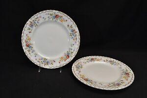 Royal-Albert-Jubilee-Rose-Pair-of-Dinner-Plates