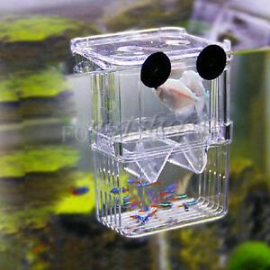 Aquarium fish breeding box tank fry trap hatchery floating for Betta fish floating