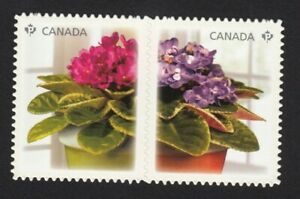 lq-AFRICAN-VIOLET-DIE-CUT-se-tenant-pair-from-Q-P-Canada-2010-2378i-MNH-VF