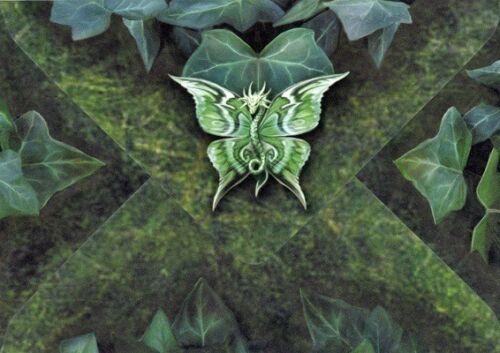 Soul Mates inkl Fantasy Grußkarte Umschlag Anne Stokes Brief Postkarte