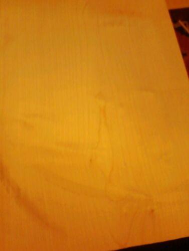 Ahorn  Body One piece maple Korpus  Bergahorn Tonholz tonewood  500+//360+//45 mm