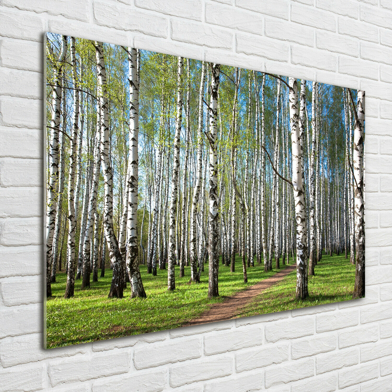 Acrylglas-Bild Wandbilder Druck 100x70 Deko Landschaften Birkenwald