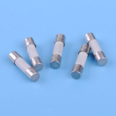 5pcs 5mm x20mm T6.3A H250V Miniature Slow Blow Cartridge Ceramic Fuses Fine Wire