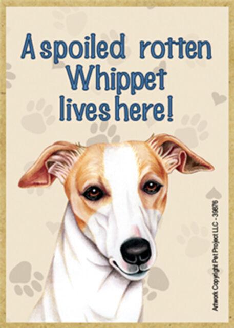 Whippet Wood Fridge Magnet - A Spoiled Rotten Whippet Lives Here!