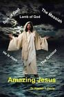 Amazing Jesus by Dr Alastair T Ferrie (Paperback / softback, 2015)
