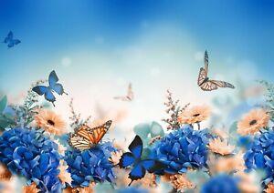Beautiful-Butterflies-Poster-Print-Size-A4-A3-Floral-Art-Poster-Gift-8568