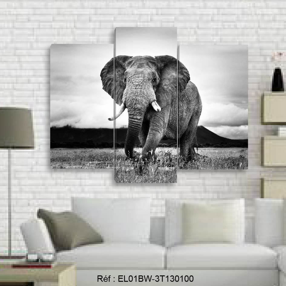 130x100- Kit 3 TOILES IMPRIMEE TABLEAU DECORATION - ELEPHANT- EL01BW-3T130100