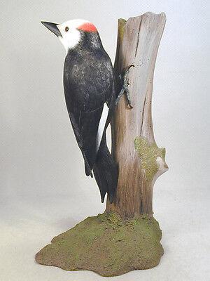 White-headed Woodpecker Original Wood Carving