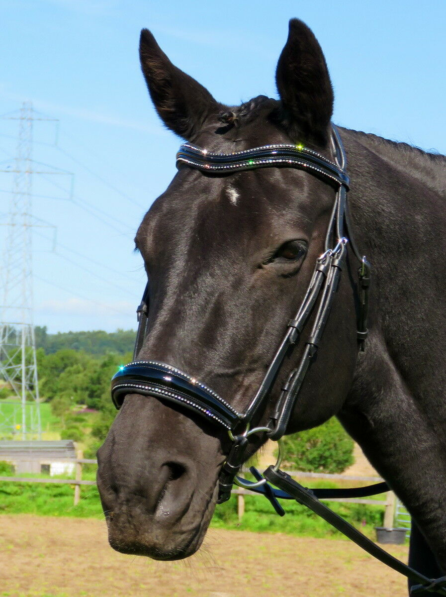 FSS STELLAR Curve CRYSTAL PIPING EDGE Comfort DROP HANOVERIAN NOSE PATENT Bridle