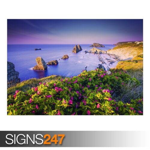 Animal Photo Picture Poster Print A0 A1 A2 A3 A4 COSTA QUEBRADA CANTABRIA 3818
