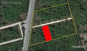 Oportunidad de Inversión TERRENO DE 1,028 m2 sobre carretera Merida Conkal Chicxulub