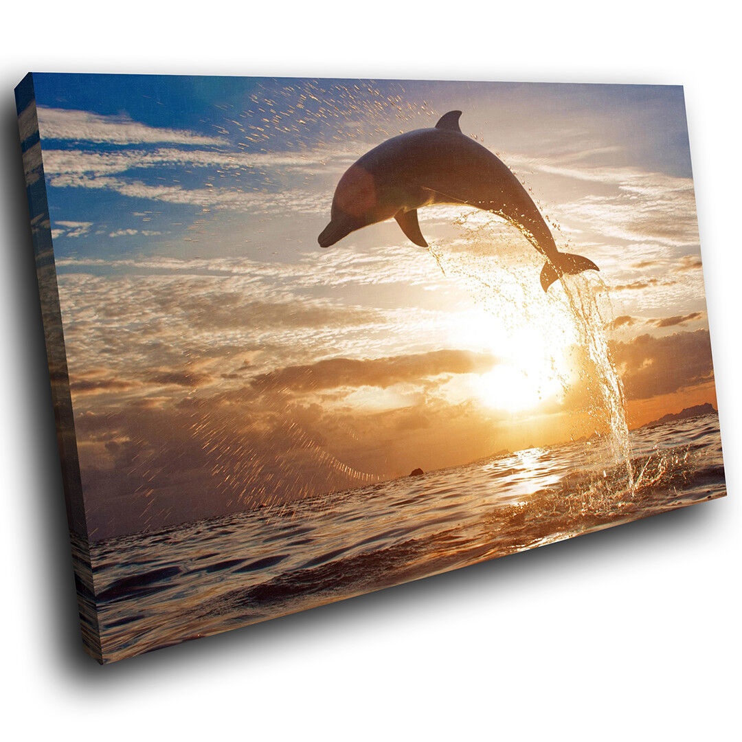A107 Ocean Sunset Dolphin Cool Funky Animal Canvas Wall Art Large Picture Prints