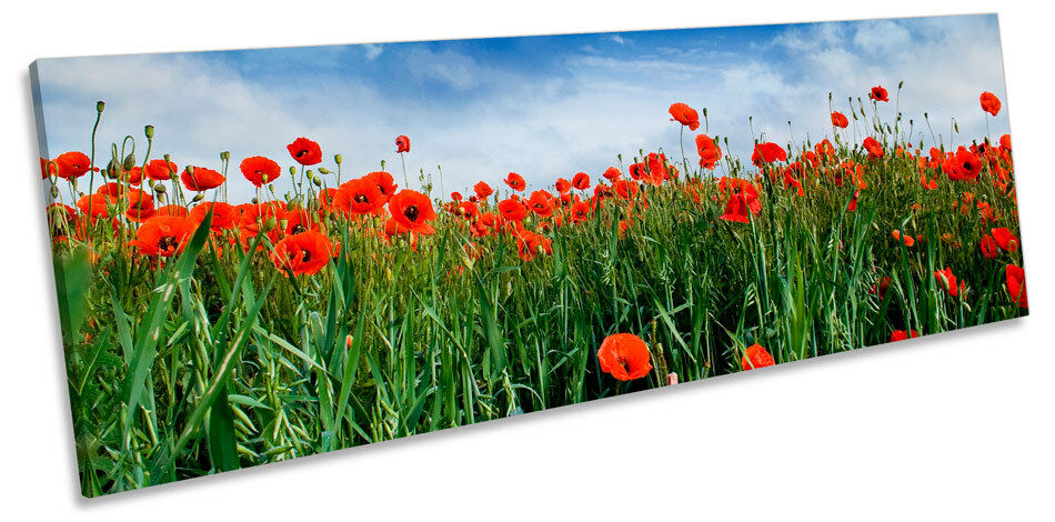 Poppy Meadow Meadow Meadow Floral Flowers CANVAS WALL ART Panorama Framed Print 3a9e3a