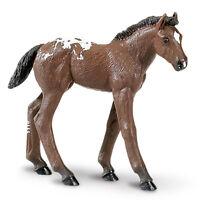 Safari Appaloosa Foal (Winner's Circle) Toys