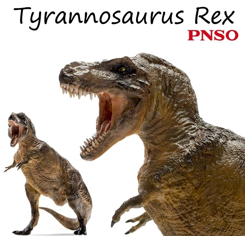 13  PNSO Tyrannosaurus Rex Dinosaurs Scientific Art Realistic Model Figures Gift