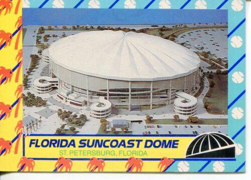 Florida Card LOT OF 100 Florida Suncoast Dome St Petersburg