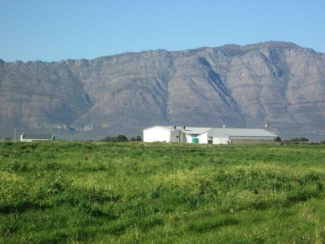 70 Ha Berg River Farm in Riebeek Valley - RXVP-0098