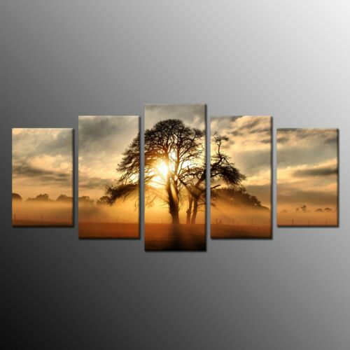 HD Canvas Print tree Sunrise Wall Art Painting Picture Home Decor 5pcs Framed