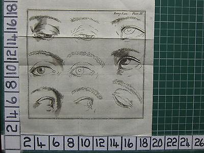 1758 Antiguo Estampado ~ Humano Ojo Varios Vistas Dibujo Alto EstáNdar En Calidad E Higiene