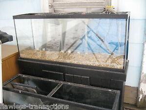 62-OFF-55-gallon-GLASS-Aquarium-Small-Pet-Reptile-Fish-Tank-Pro-Grade