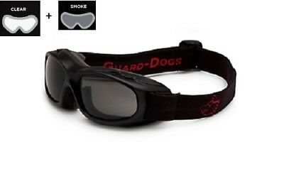 Golden Sunglasses 2 Lens Set Carbon Fiber Frame NEW Guard-Dogs Evader I Smoke