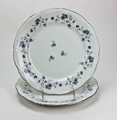 "JOHANN HAVILAND CHINA BLUE GARLAND 10 /"" DINNER PLATE  Bavaria Germany SET OF 2"