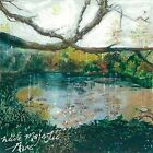 Wide Majestic Aire [EP] * by Trembling Bells (Vinyl, Apr-2016, Tin Angel)