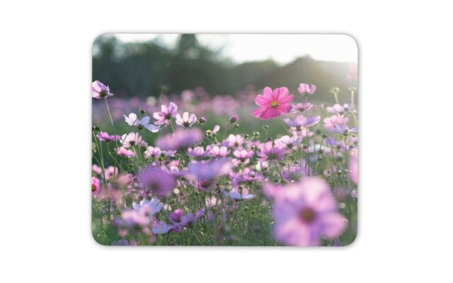 Pretty Cats Mouse Mat Pad Cats Mum Sister Daughter Cool Gift Computer Gift #8191