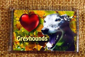 Black-Greyhound-Gift-Dog-Fridge-Magnet-Birthday-Gift-to-Greyhounds-Charity