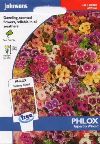 175 Semi Johnsons semi-pittura Pack-Fiore-Phlox TAPESTRY Misto