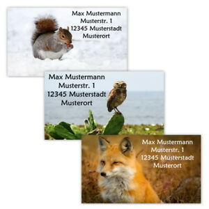 40-Adressetiketten-Adressaufkleber-oder-10-Visitenkarten-Motiv-034-Waldbewohner-034