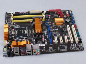 ASUS P5Q TURBO ETHERNET DRIVERS FOR WINDOWS VISTA