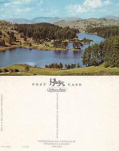 1970-039-s-TARN-HOWS-AMBLESIDE-LAKE-DISTRICT-CUMBRIA-UNUSED-COLOUR-POSTCARD
