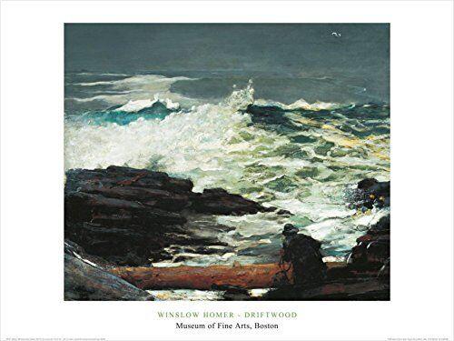 Driftwood 1909 by Winslow Homer 24x32 Museum Art Print Poster Ocean Coastal Wave